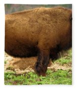 Pennsylvania Bison Fleece Blanket