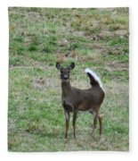 Pennsylvania White Tail Deer Fleece Blanket