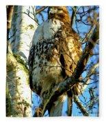 Perched Hawk Fleece Blanket
