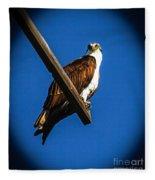 Perching Osprey Fleece Blanket