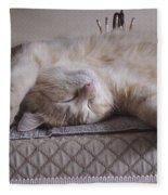 Percy Cat Sleep Stylist Fleece Blanket