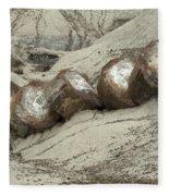 Petrified Forest 1 Fleece Blanket