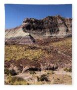 Petrified Forest Badlands Fleece Blanket