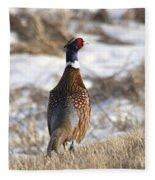Pheasant In The Winter Fleece Blanket