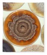 Phomopsis Mold Cultures Fleece Blanket