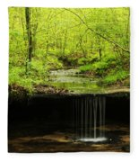 Pickle Spring In Missouri Fleece Blanket