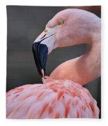 Picky Fleece Blanket