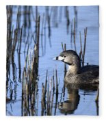 Pied-billed Grebe, Montreal Botanical Fleece Blanket