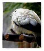 Pied Imperial Pigeon Fleece Blanket