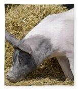 Piggy Piggy In The Straw Fleece Blanket