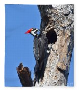 Pileated Woodpecker Fleece Blanket