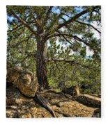 Pine Tree And Rocks Fleece Blanket