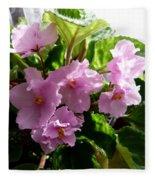 Pink African Violets Fleece Blanket