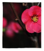 Pink Blossom In The Evening Fleece Blanket