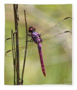 Pink Dragonfly With Sparkly Wings Fleece Blanket