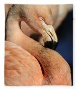 Pink Flamingo 8 Fleece Blanket