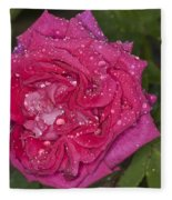 Pink Rose Wendy Cussons With Raindrops Fleece Blanket