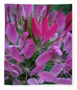 Pink Spider Flower Fleece Blanket