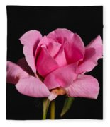Pink Tea Rose Fleece Blanket