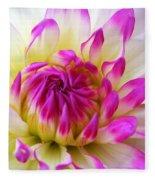 Pink Tinged Dahlia Fleece Blanket