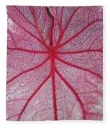 Pink Veins Fleece Blanket