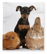 Pinscher Puppy With Rabbit And Guinea Fleece Blanket