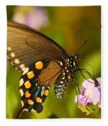 Pipevine Swallowtail Butterfly Fleece Blanket