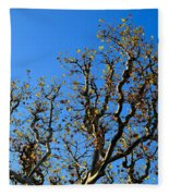 Plane Tree In Autumn Fleece Blanket