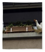 Plants And Animal Figures In The Balcony Of A Building In Lucern Fleece Blanket