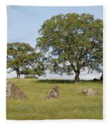 Pleasant Hillside Fleece Blanket