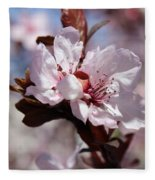 Plum Blossoms 10 Fleece Blanket