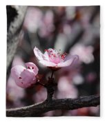 Plum Blossoms 9 Fleece Blanket