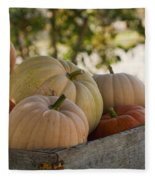 Plump And Purdy Pumpkins Fleece Blanket