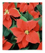Poinsettia Varieties Fleece Blanket