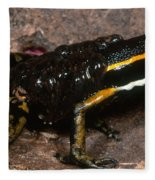 Poison Arrow Frog With Tadpoles Fleece Blanket