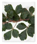 Poison Oak Branch Fleece Blanket