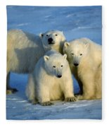 Polar Bear With Cubs Fleece Blanket