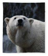 Polar Bear With Waterfall Fleece Blanket