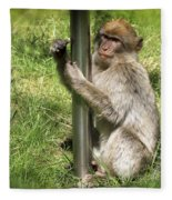 Pole Dancing Macaque Style Fleece Blanket