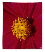 Pollen Dust Fleece Blanket