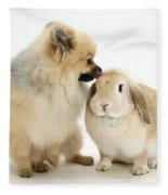 Pomeranian Dog And Rabbit Fleece Blanket