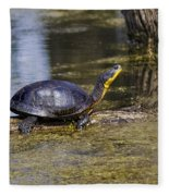 Pond Turtle Basking In The Sun Fleece Blanket
