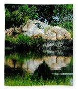 Pool In Marsh At Mystic Ct Fleece Blanket