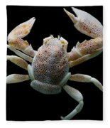 Porcelain Crab Fleece Blanket