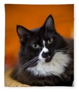 Portrait Of A Cat Fleece Blanket