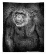 Portrait Of A Chimpanzee Fleece Blanket