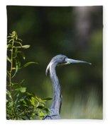 Portrait Of A Heron Fleece Blanket