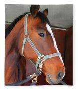 Portrait Of A Horse Fleece Blanket