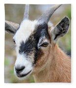 Portrait Of A Pygmy Fleece Blanket