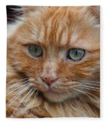Portrait Of An Orange Kitty Fleece Blanket